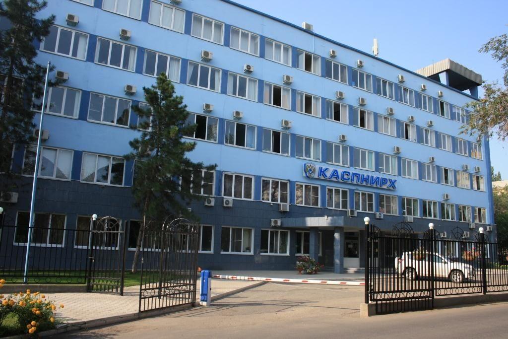 Астраханские ученые восстанавливают популяцию осетровых