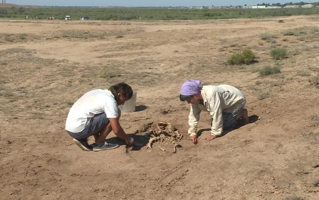Археологи под Астраханью обнаружили остатки древнего поселения