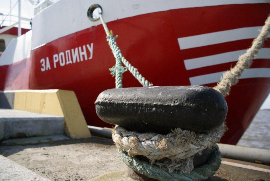 Россия на Каспии возобновляет ловлю кильки