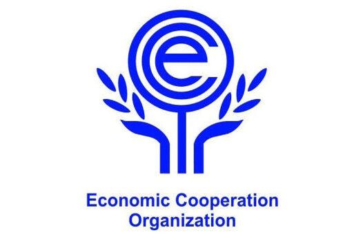 Каспийский регион как ключевое направление председательства Туркменистана в ОЭС