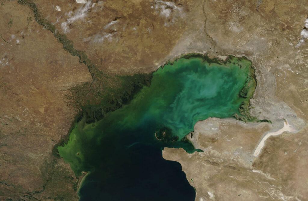 Экологические проблемы, биоресурсы и рыболовство в Волжско-Каспийском бассейне