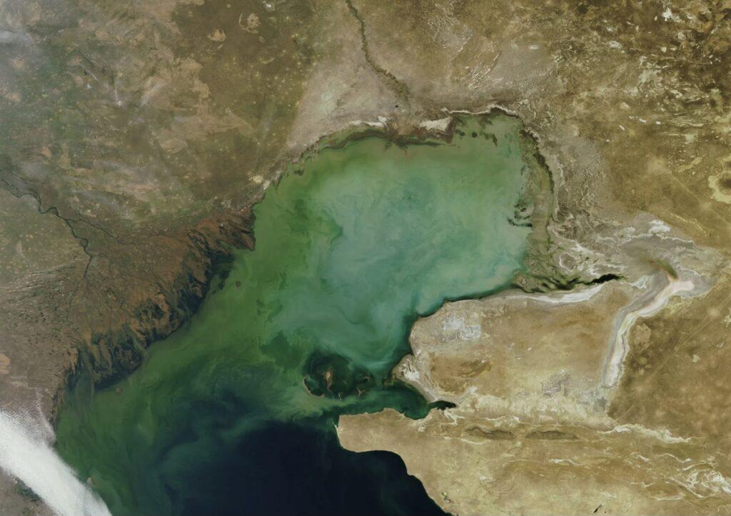В Казахстане часть акватории Каспийского моря объявят заповедной зоной